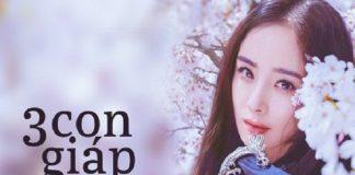 hoi-dau-tuat-la-3-con-giap-phat-tai-cuoi-nam-2018