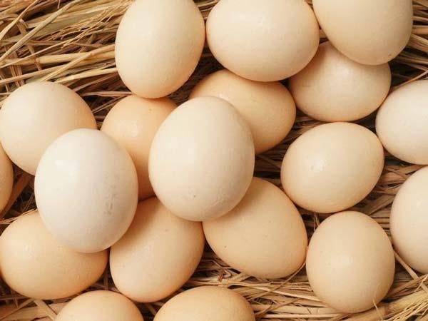 Mơ thấy ổ trứng gà là điềm lành hay dữ?