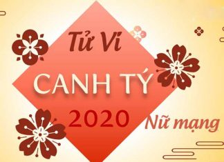 Dự báo tử vi tuổi Canh Tý mạng nữ 2020