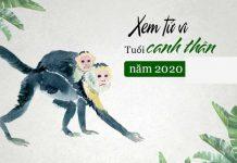 Canh Thân năm 2020 gặp nhiều vấn đề về mặt sức khỏe